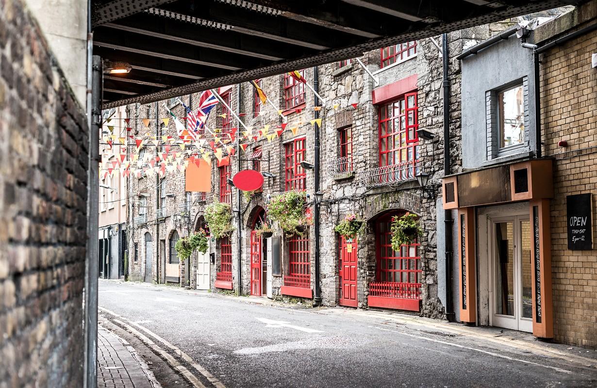 Dublinia district