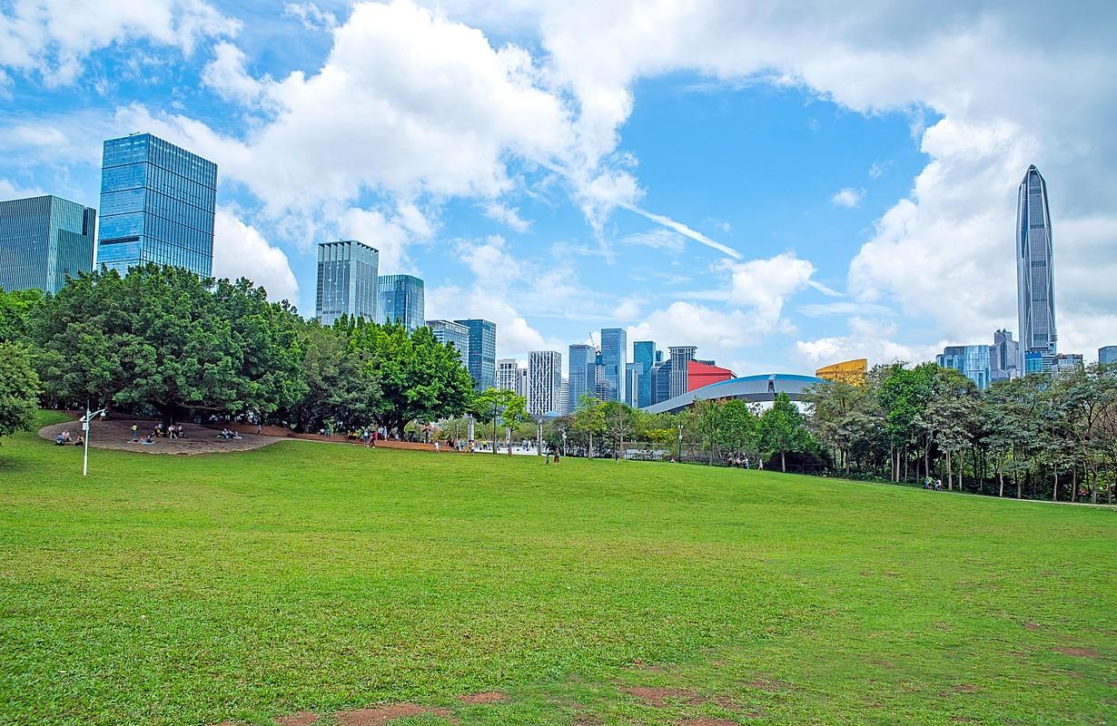Shenzhen Lianhuashan Park/Shenzhen City Scenery Safe Skyline
