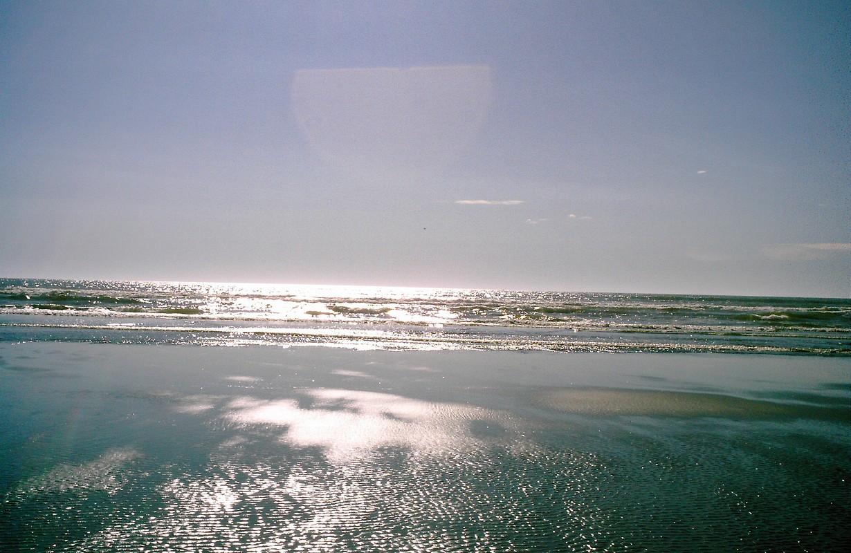 Beach-Ocean Shores, WA-August