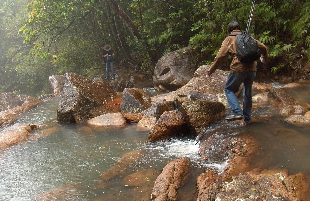 The top of the Falls at Crystal Creek in Paluma