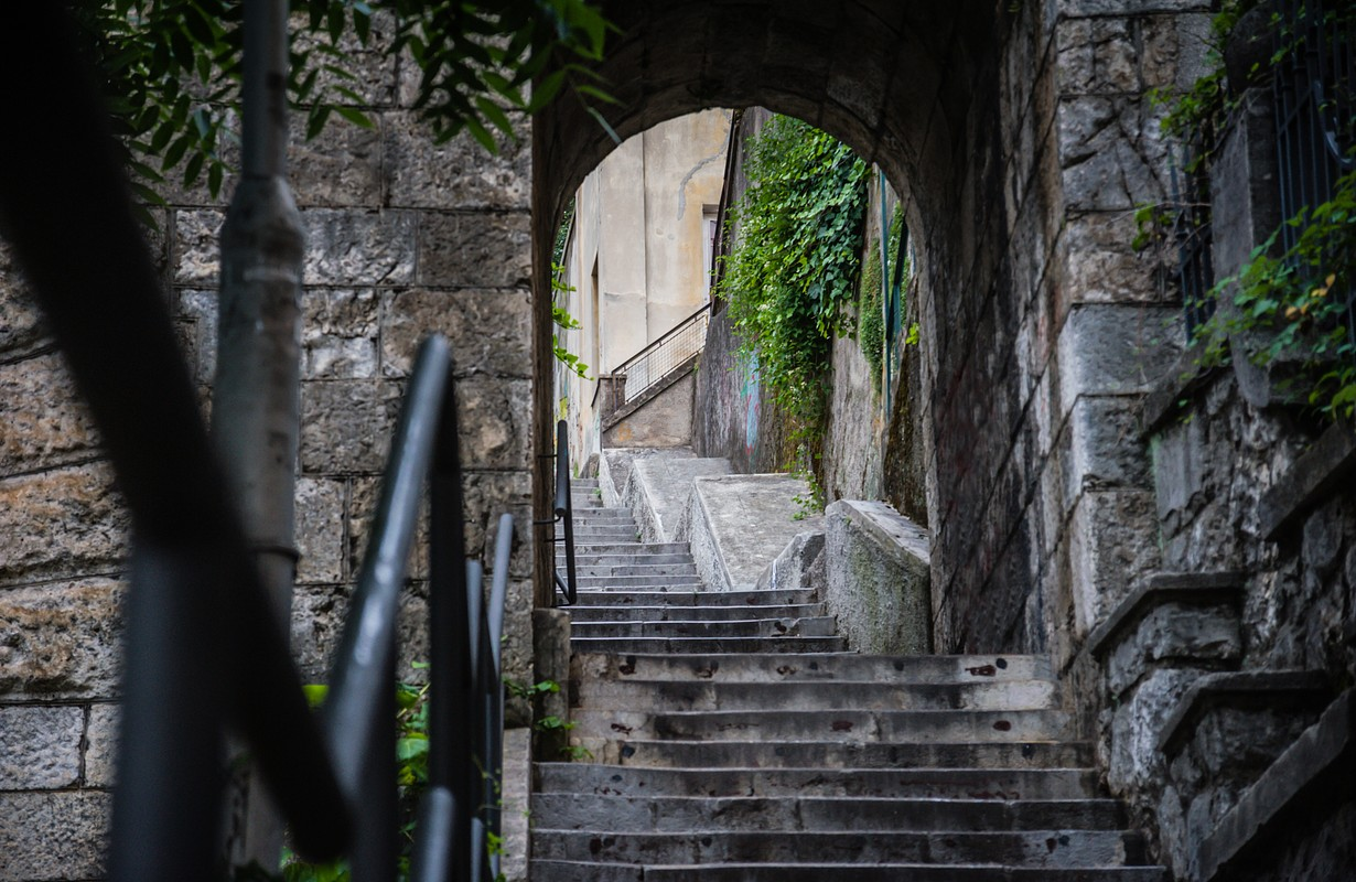 Old city steps made from stone and green plants surrounded with houses