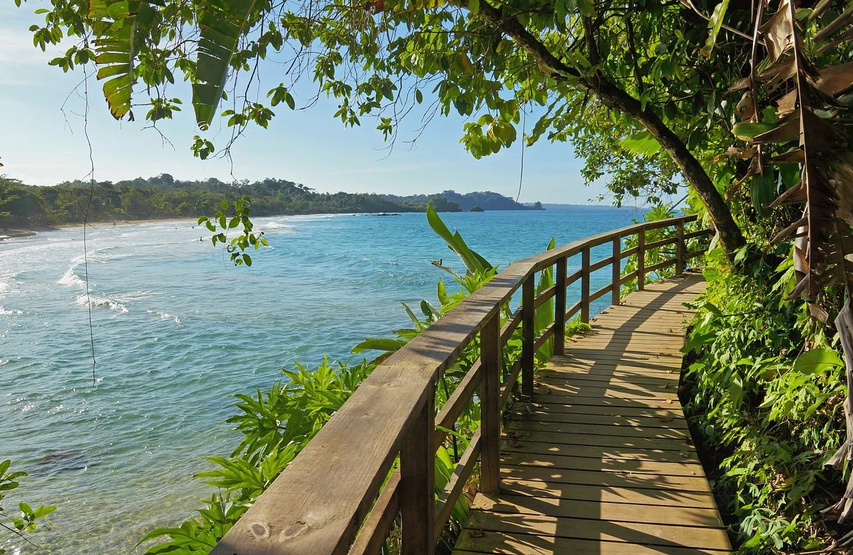 Wooden footbridge with lush vegetation along the Caribbean shore of Bastimentos island, Panama
