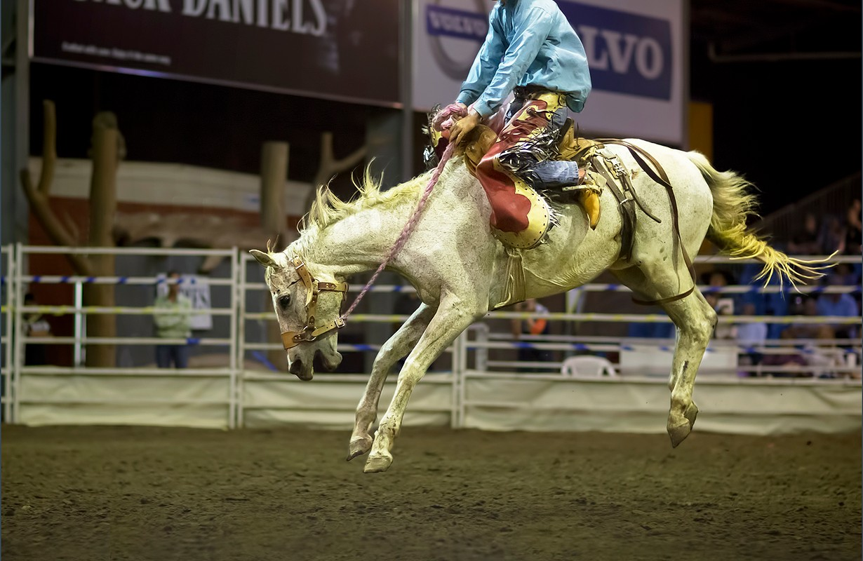 Rodeo at the Great Western Hotel in Rockhampton