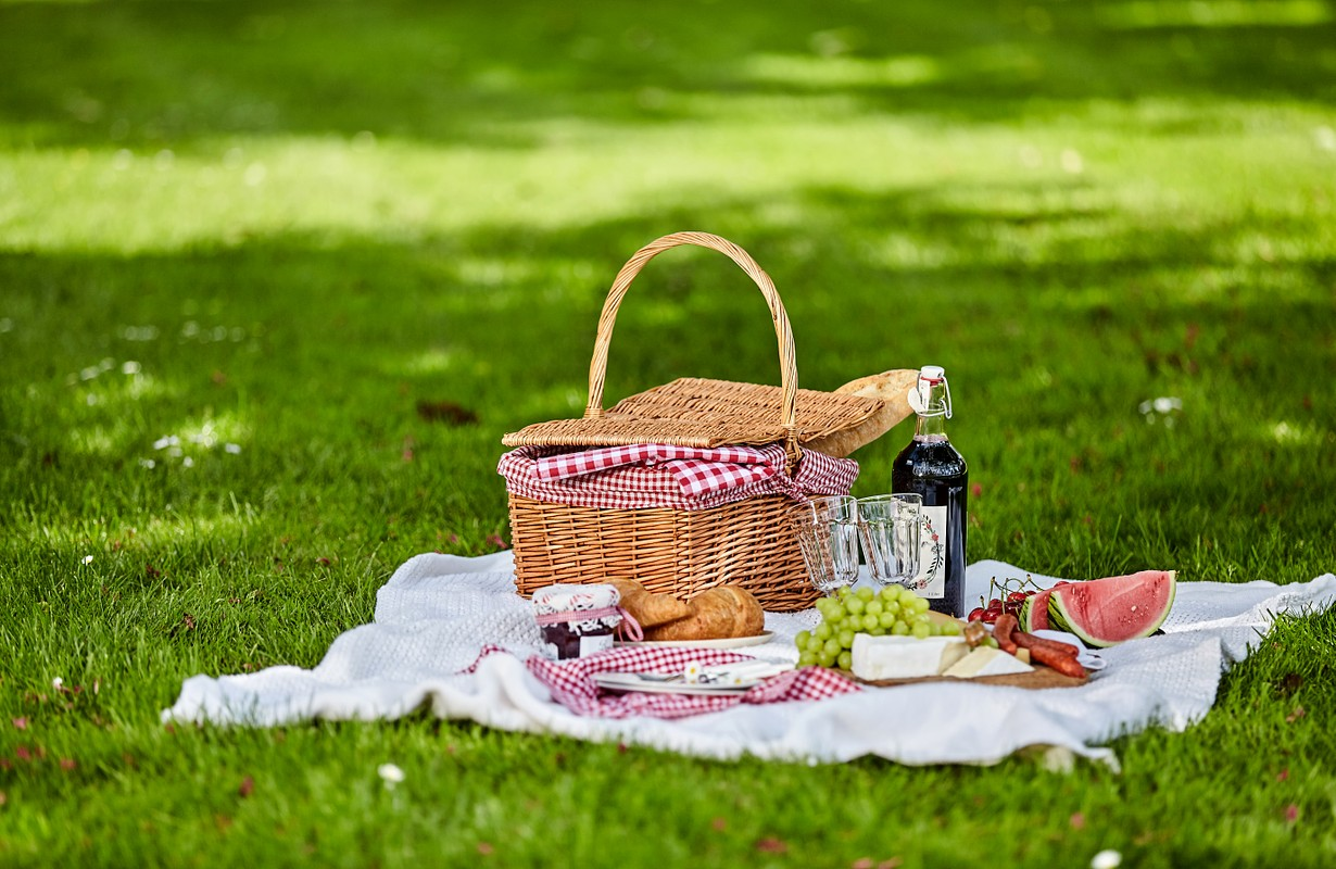 Healthy outdoor summer or spring picnic spread out on a rug on a lush green lawn