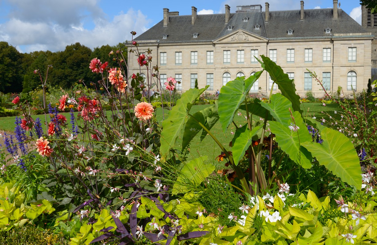 Flowers in front of the building of Fine Arts Museum of Limoges, France