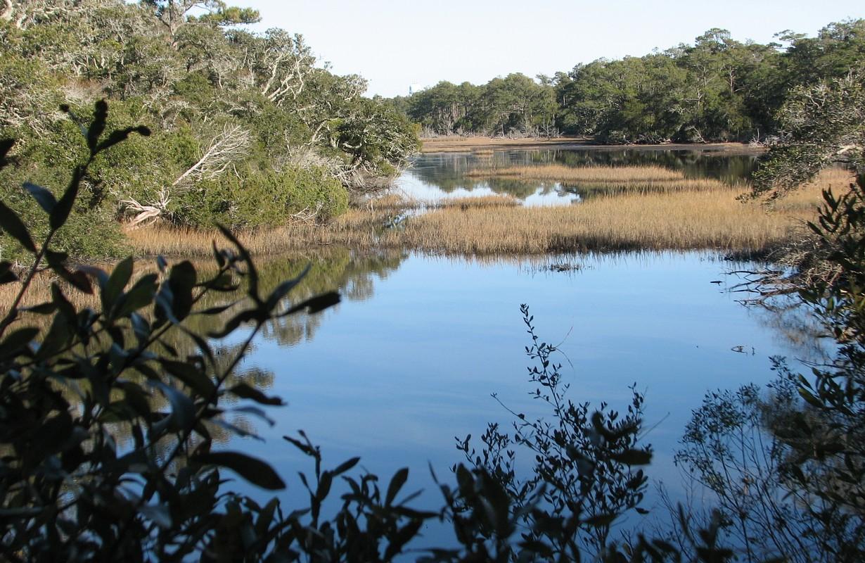 Theodore Roosevelt Natural Area