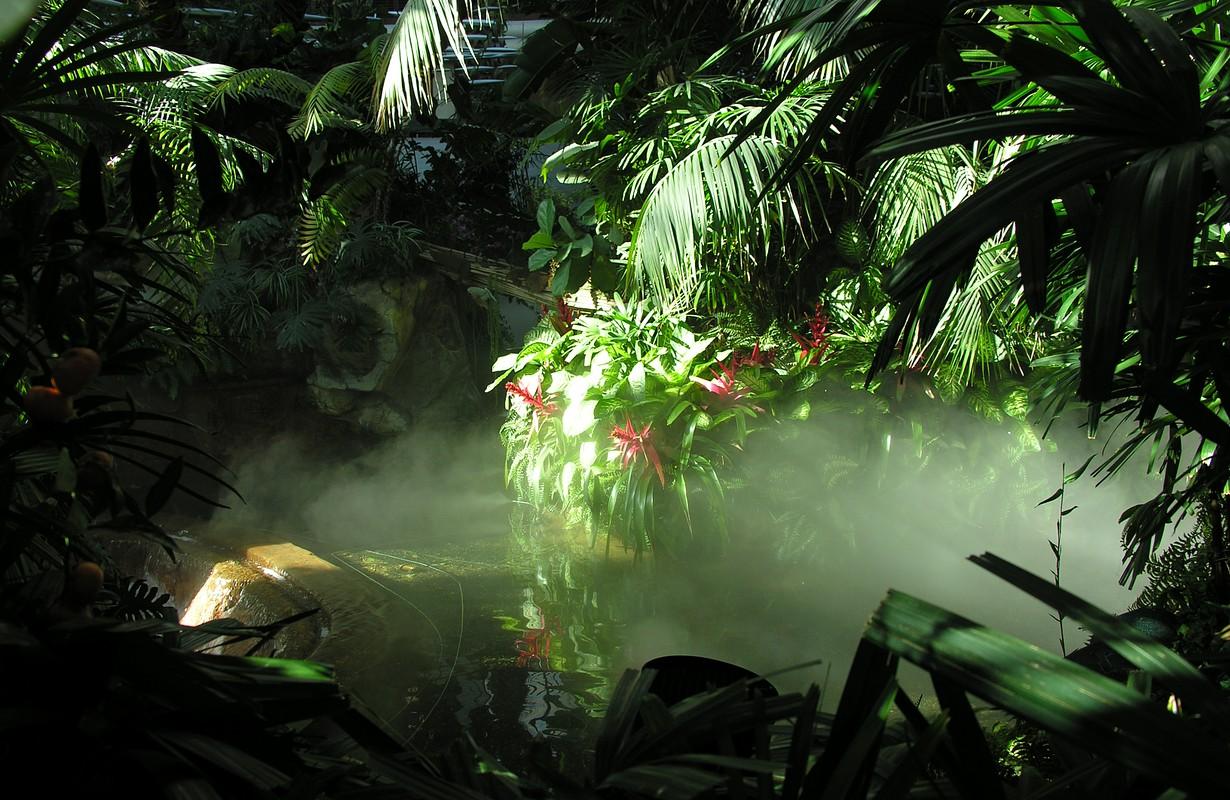 Randers Regnskov (Rain forest) at Randers Tropical Zoo in Denmark