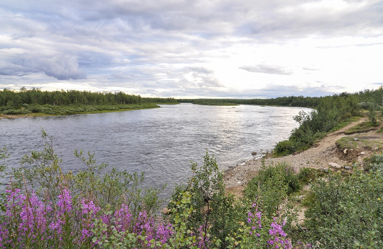A river in northern Sweden