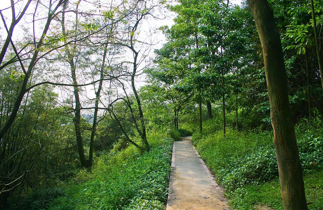 白云山Scenery in Guangzhou, China