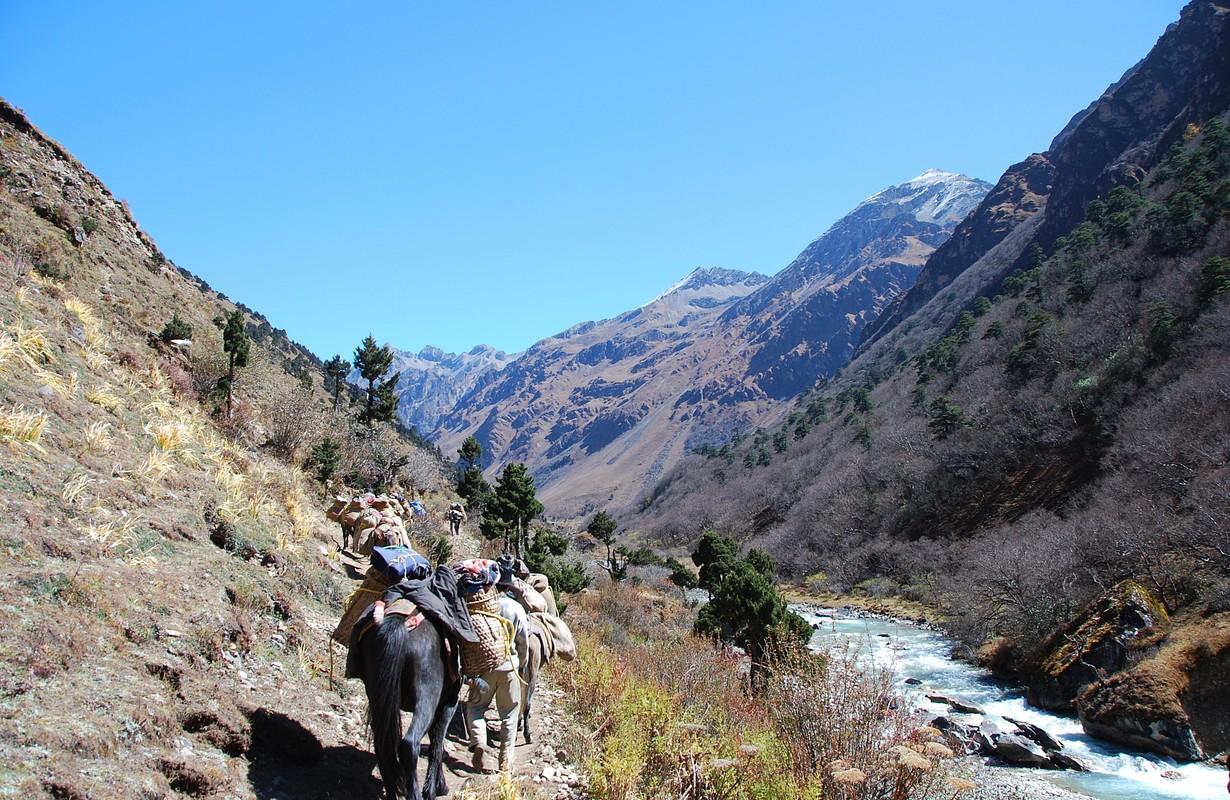 Trek Bhutan