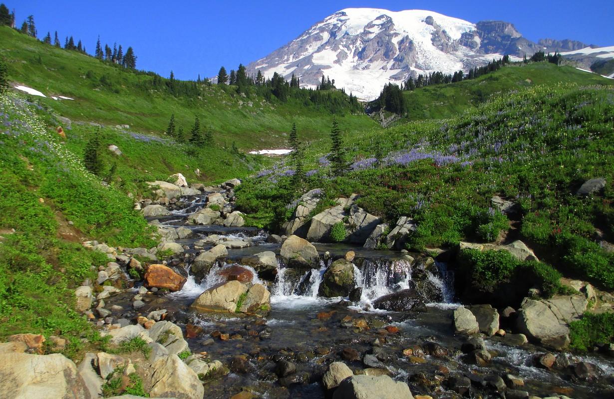 Mount Rainier National Park, Grand Mound, Washington
