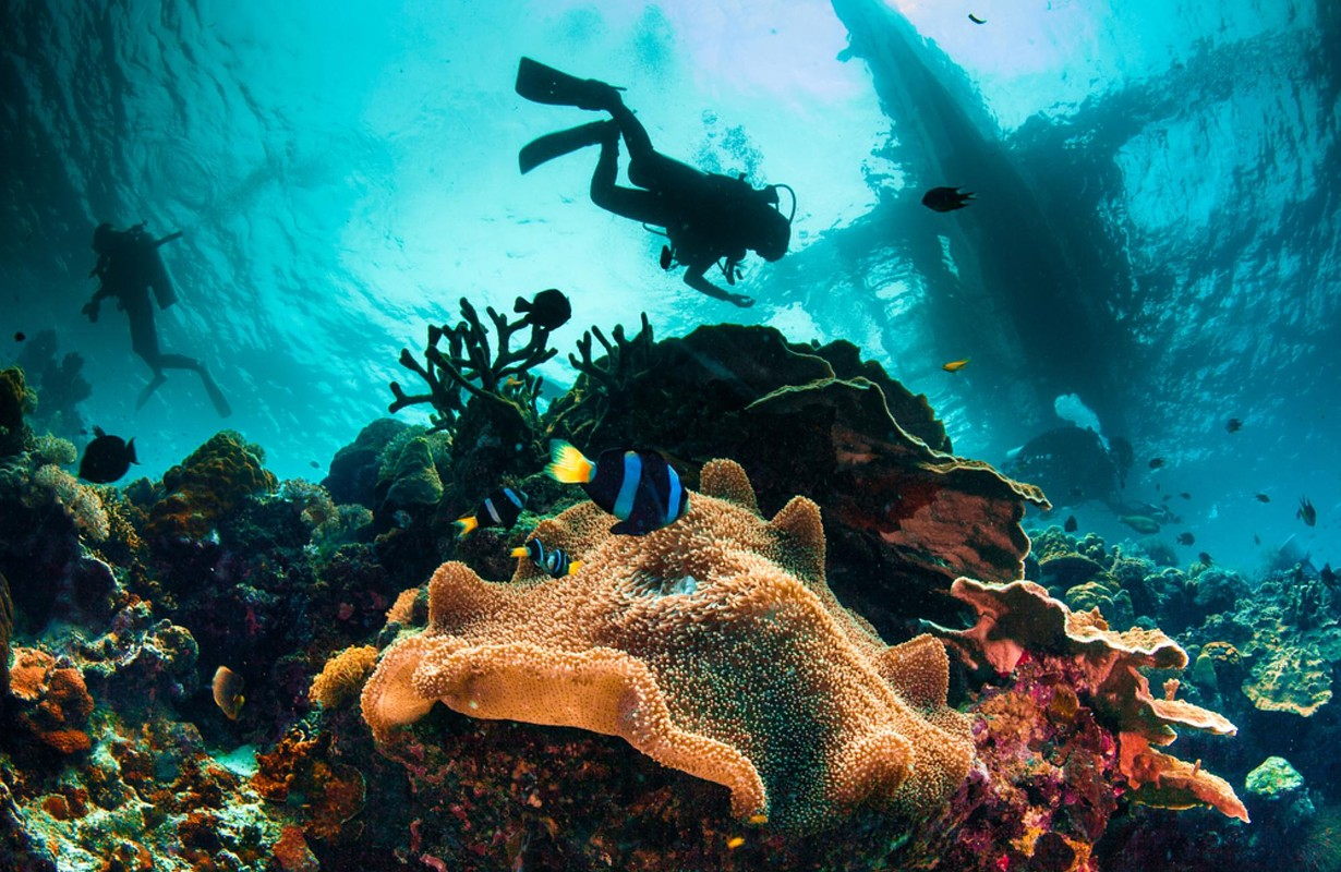 Diving, Exotic Islands of Panama, Central America