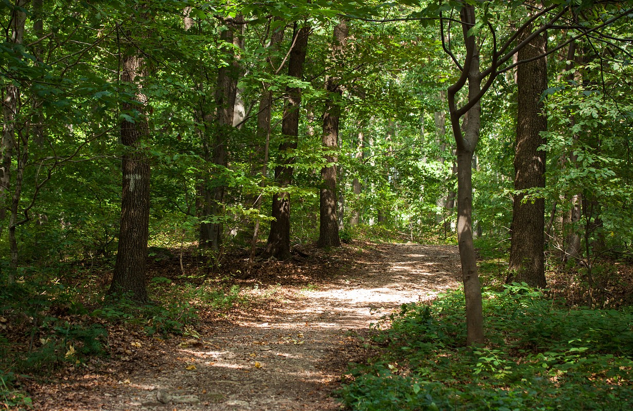 Trail Kamenjak