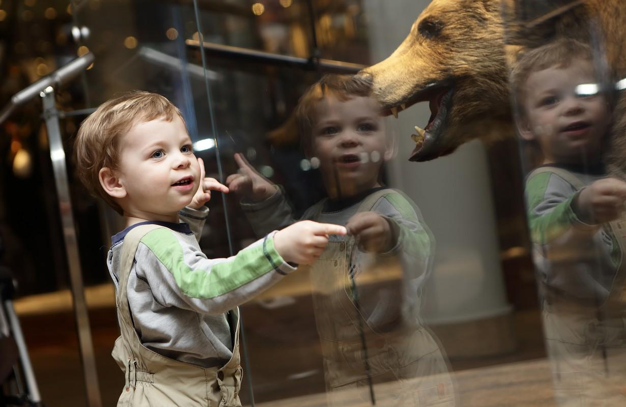 Portrait of curiosity kid in a museum