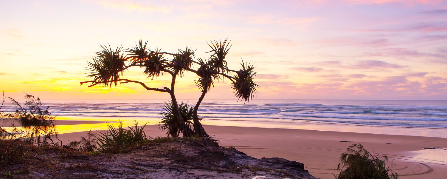 Sunrise on Fraser Island's 75 mile beach