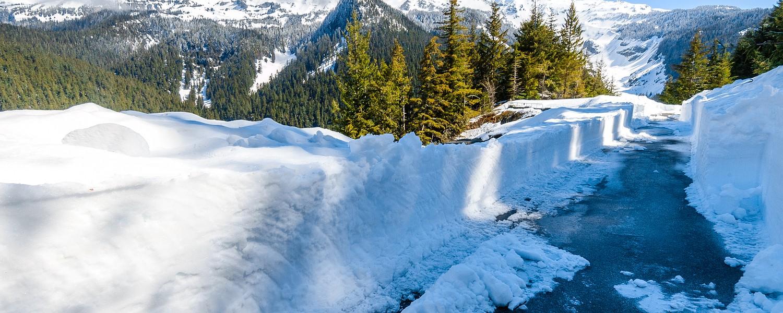 Deep Snow at Mount Rainier National Park