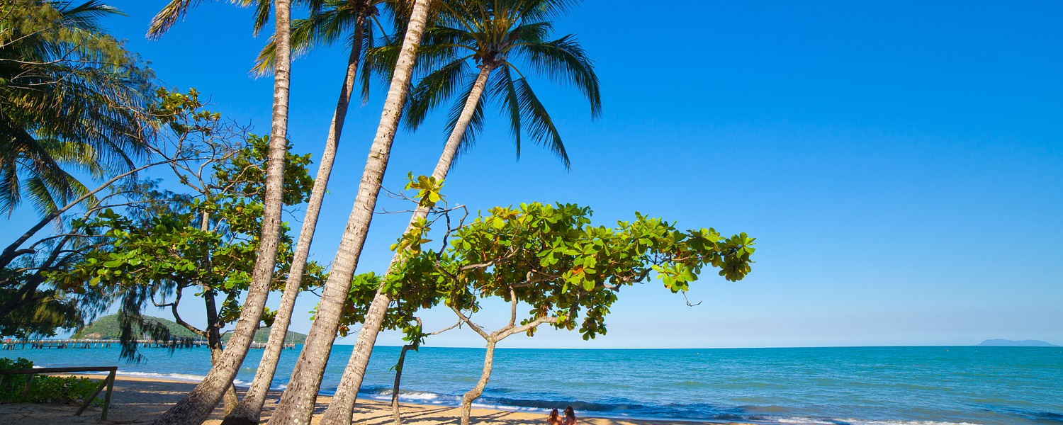 beautiful tropical beach with palm trees. Cairns, Australia