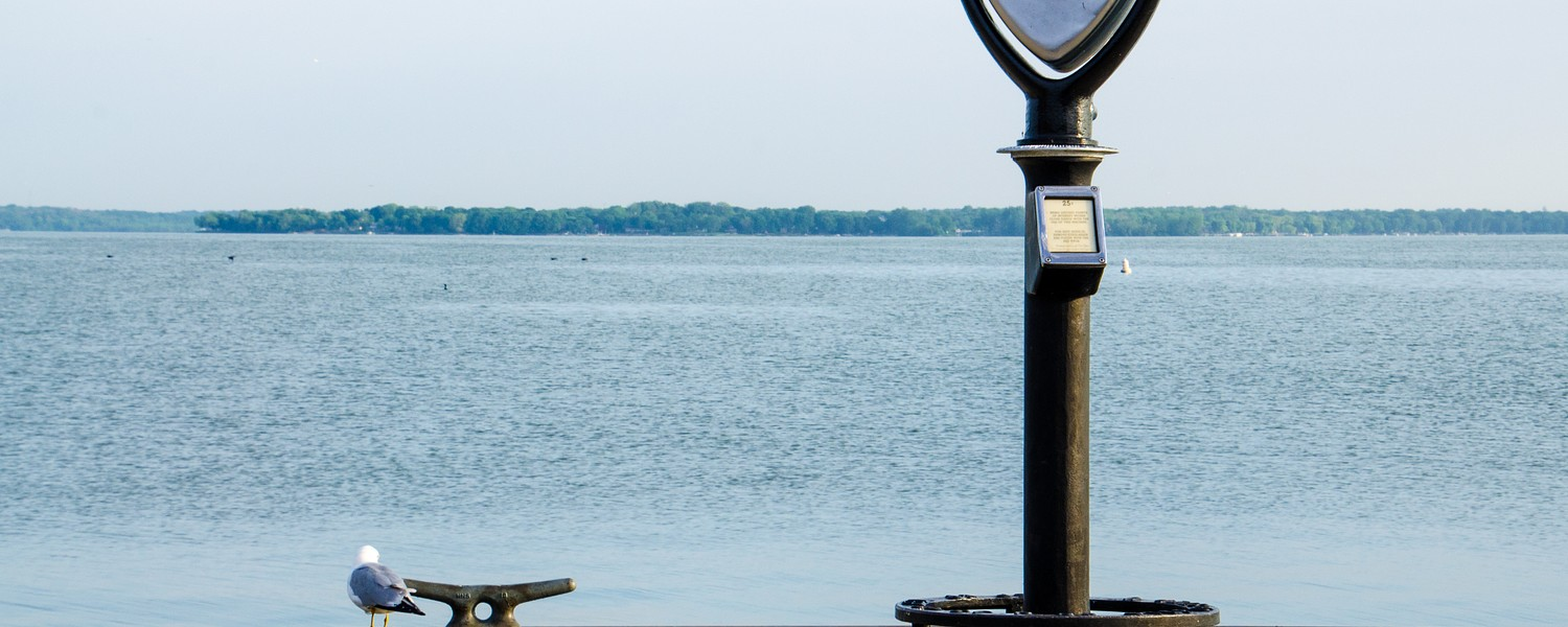 Coin operated binoculars and sea gull by Sandusky Bay