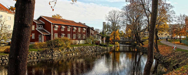 Sjöliv, Västerås