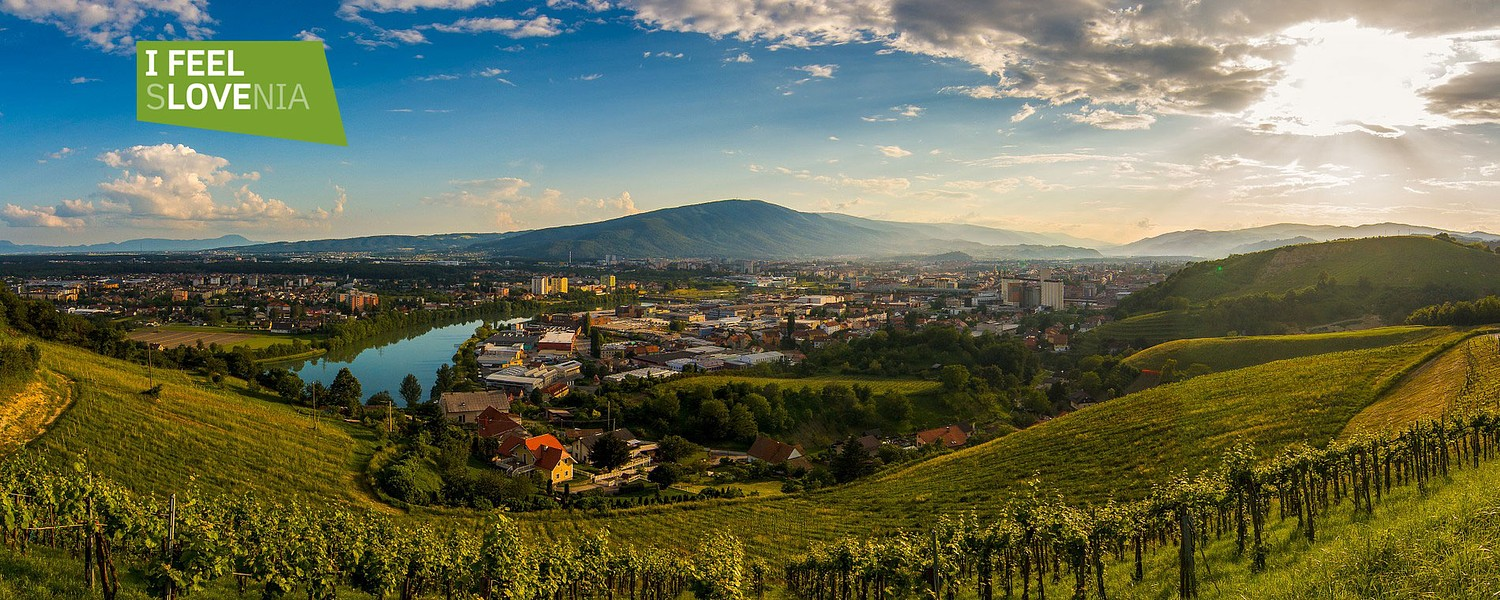 The Best Travel Guide To Maribor (UPDATED 2020