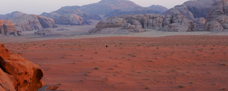 Desert Tabuk