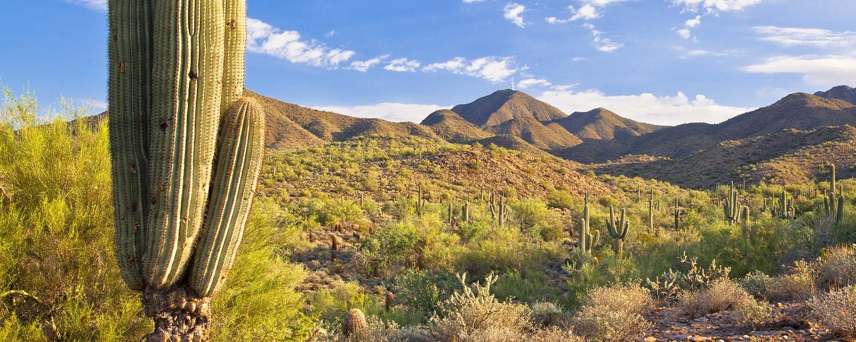The McDowell Mountains in Scottsdale, Arizona
