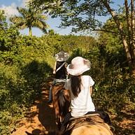 HorsePlay Punta Cana