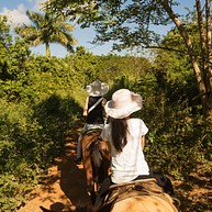 Pferdewagen Punta Cana