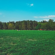 Kaunas Camping