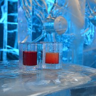 Magic Ice Bar and Gallery