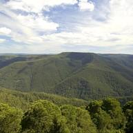 배링턴 톱스(Barrington Tops) 국립공원