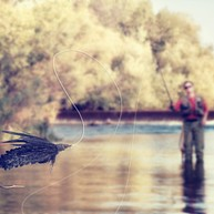 Matt Heron Fly Fishing