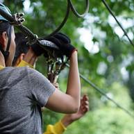 Canopy Tour (Zip Line)