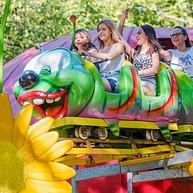 Zoo- und Pflanzenwelt des Kulturparks im Großwald