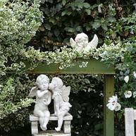 Giovannis Garden