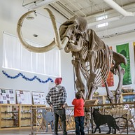 Fossil Discovery Center of Madera County