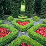 Musée et jardins David et Alice van Buuren