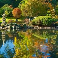 Ogrod Japonski (Japanese Garden)