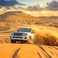 Safaris dans le désert