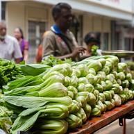 Central Market Port Louis