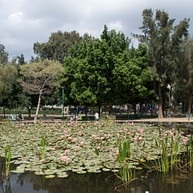 Parc Meir