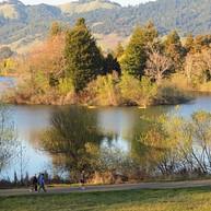 スプリングレイク・リージョナルパーク / Spring Lake Regional Park