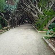 Botanical Garden Hamma
