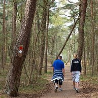Kronoskogen – nature reserve