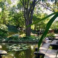 Ботанический сад Јевремовац