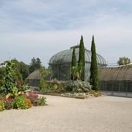 Botaniska Trädgården / Jardin Botanique