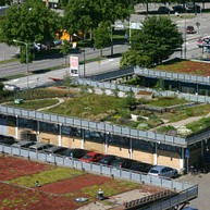 Augustenborg eco-city and roof gardens