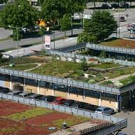 Экогород Аугустенборг с ботаническим садом на крышах