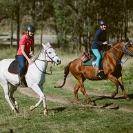 查普曼山谷骑马社 (Chapman Valley Horse Riding)