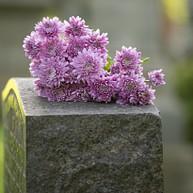 Den jødiske kirkegården